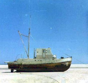 Baja Fishing Boat