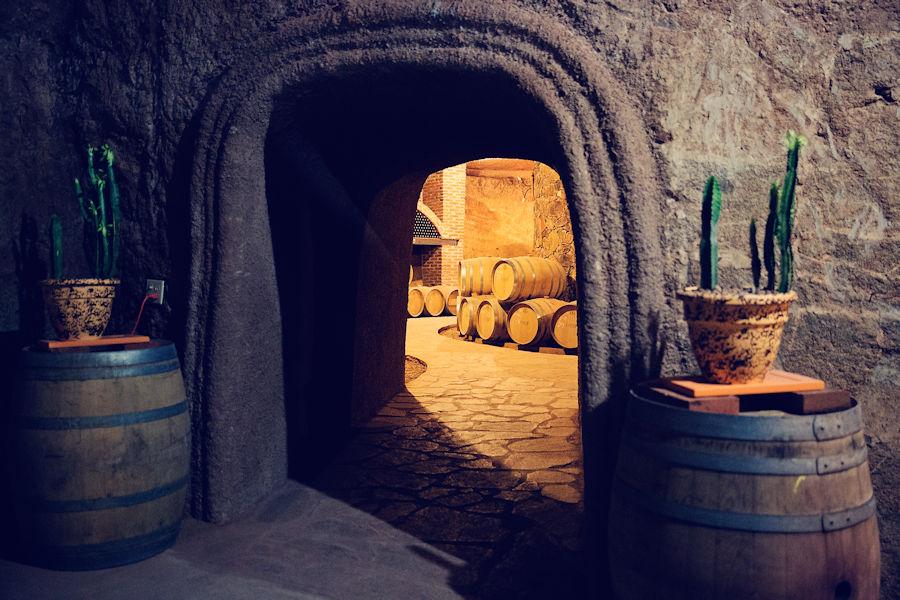 Casta de Vinos