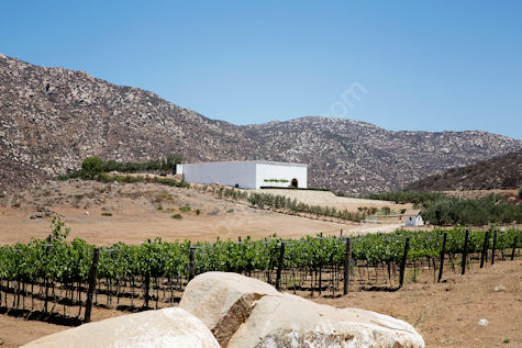 Chateau Camou Valle de Guadalupe