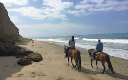 Horses on Beach Baja