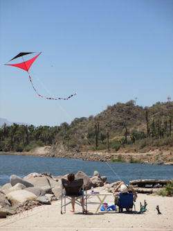 Kite Flying Baja