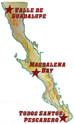 Mouthwatering Baja Map