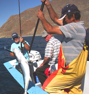 Baja Fishing