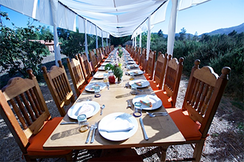 Rancho La Puerta Table