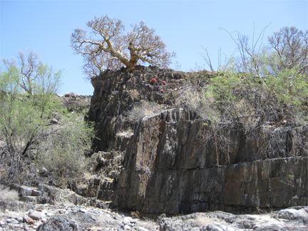 Rock Formation And Tree