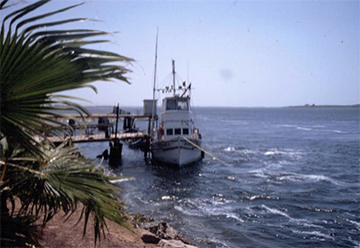 San Quintin Harbor