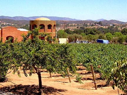 Guadalupe Valley Winery
