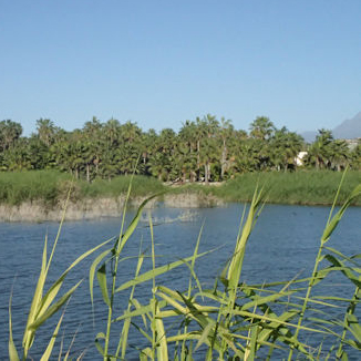 Laguna La Poza: A Coastal Oasis