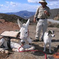 Walking the Baja Peninsula